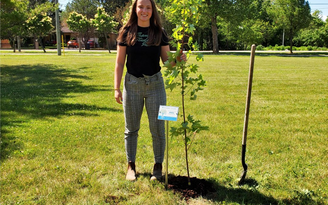 Planting Our Roots
